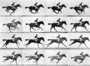 http://upload.wikimedia.org/wikipedia/commons/4/4a/Muybridge_race_horse_gallop.jpg